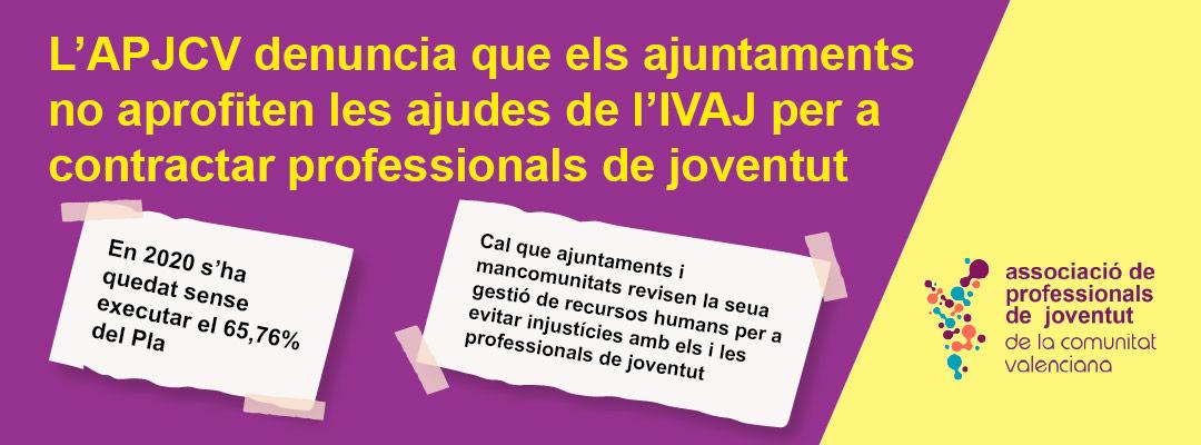 pla concertat. Associació de Professionals de Joventut de la Comunitat Valenciana (APJCV)